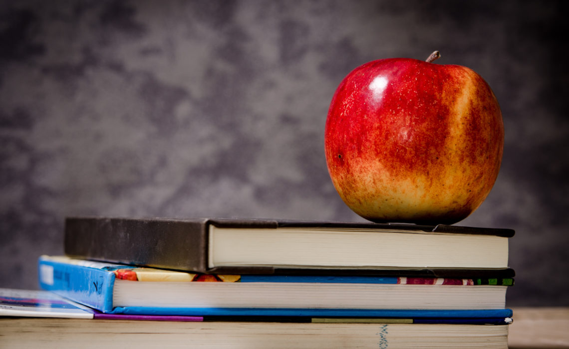Back to school : Easy and balanced meals ideas to simplify your routine